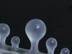 写真3 UV硬化性アクリルプラスチック